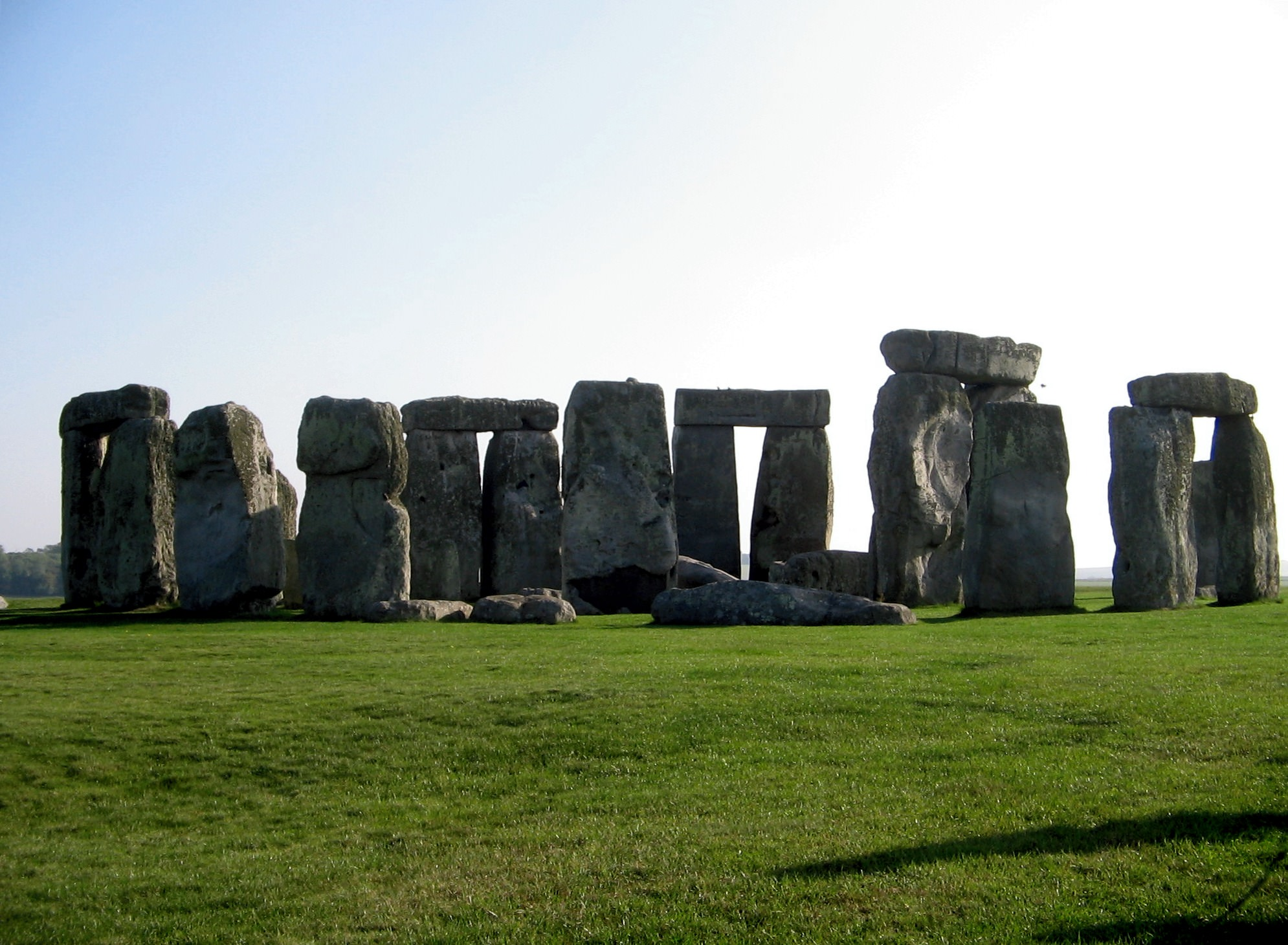 Any druids reading? Look away now