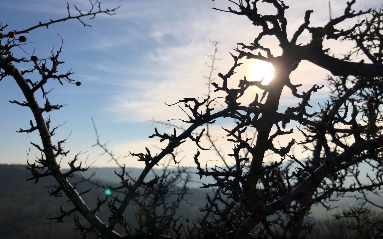 A glimpse of the sun